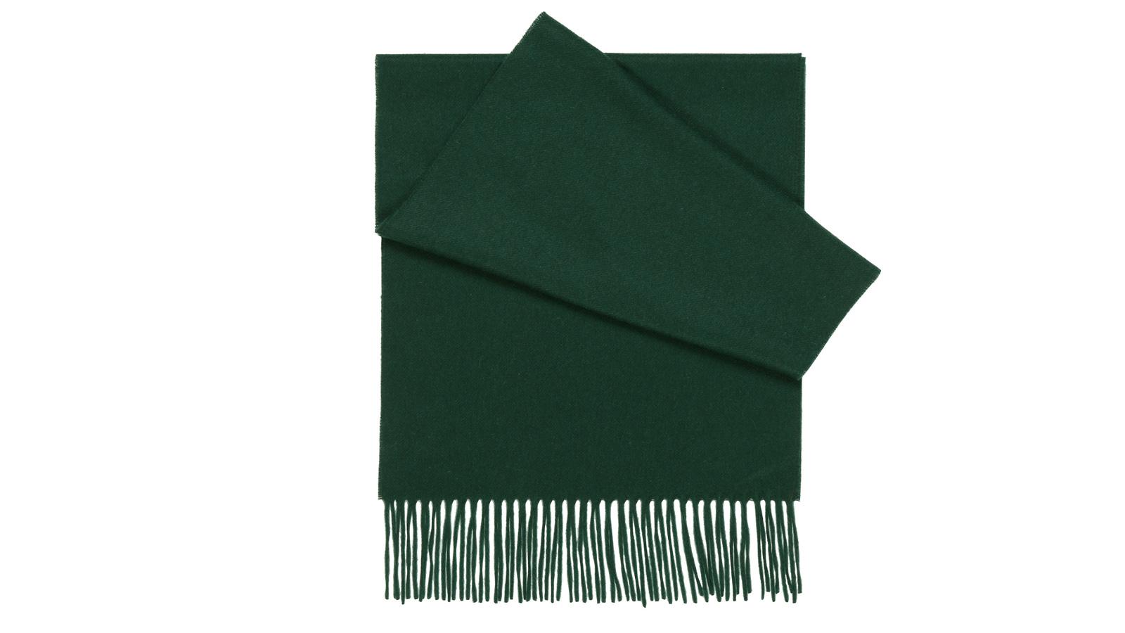 Solid Green Cashmere Scarf - slider image