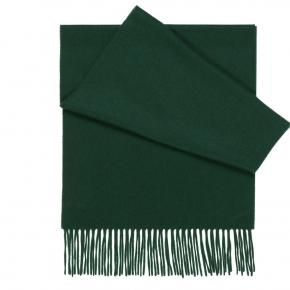 Solid Green Cashmere Scarf - thumbnail image 1